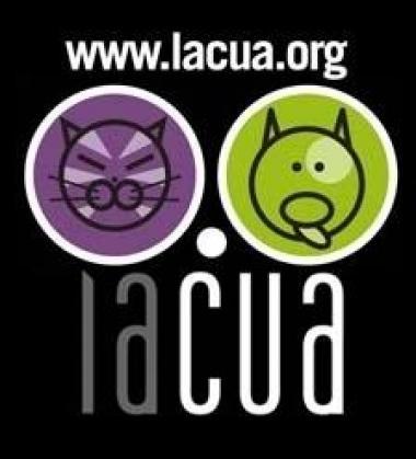 Maxcotea | Foto del maxcotero Lacua | Maxcotea, Adopción de mascotas. Adopción de perros. Adopción de gatos.
