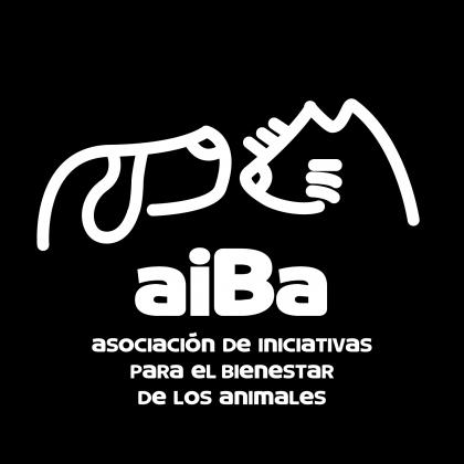 Maxcotea | Foto del maxcotero aiBa | Maxcotea, Adopción de mascotas. Adopción de perros. Adopción de gatos.